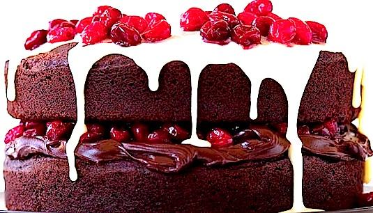 CHOC-CRAN CAKE